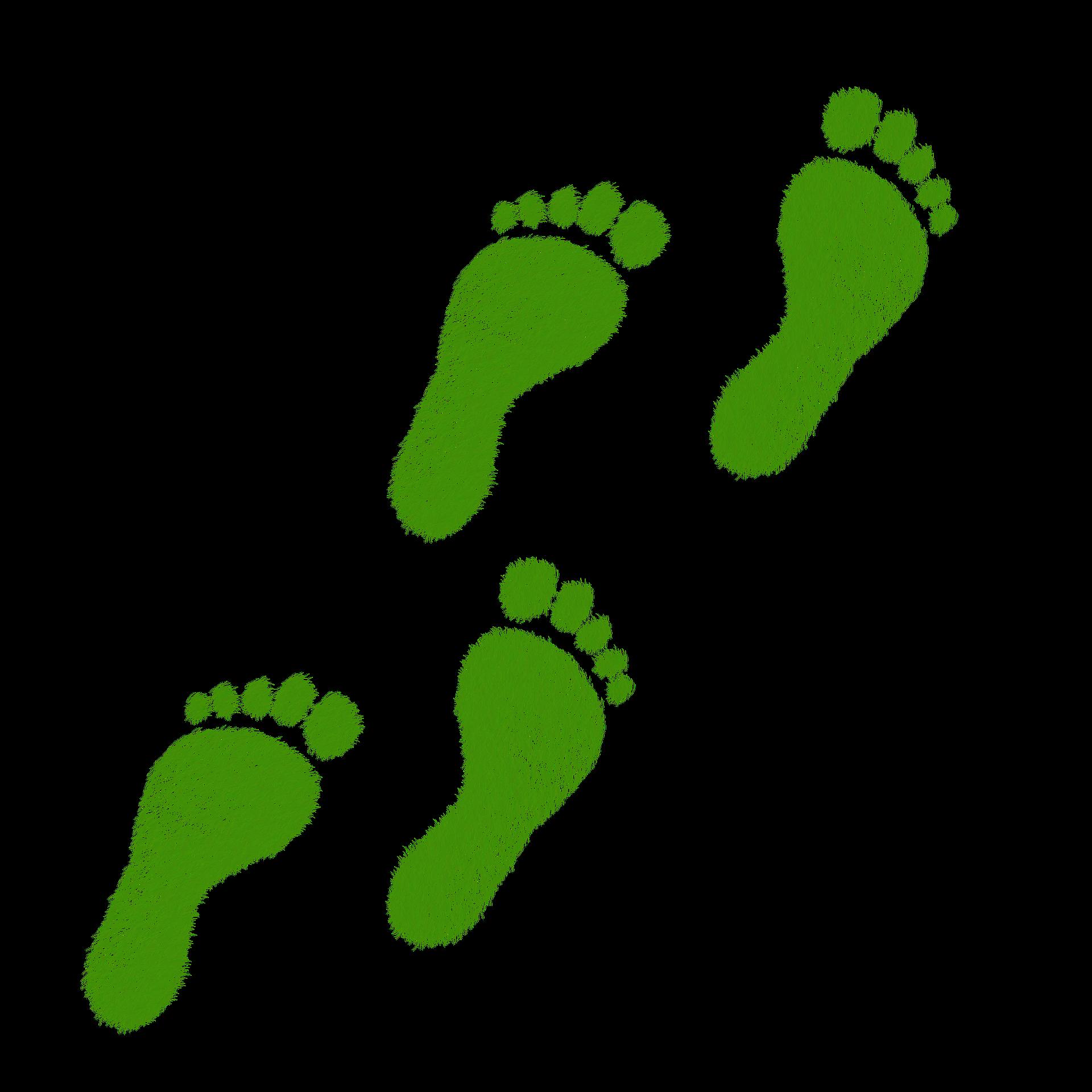 ¿Sabes cuál es tu huella ecológica?