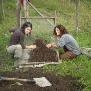 En-nuestros-viveros-de-especies-autóctonas-para-reforestar-1