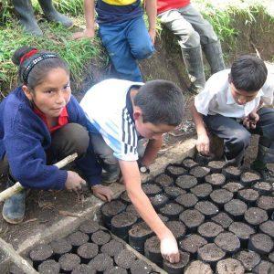 Enseñando-a-los-niños-y-niñas-a-cultivar-y-a-reforestar-con-especies-autóctonas-de-la-zona-1