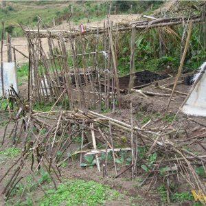 Enseñando-a-los-niños-y-niñas-a-cultivar-y-a-reforestar-con-especies-autóctonas-de-la-zona-2