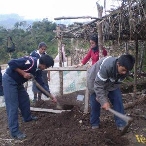 Enseñando-a-los-niños-y-niñas-a-cultivar-y-a-reforestar-con-especies-autóctonas-de-la-zona-3